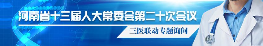 河南省十三届人大常委会第二十次会议